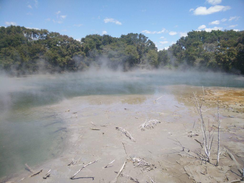 A hot spring in Rotorua