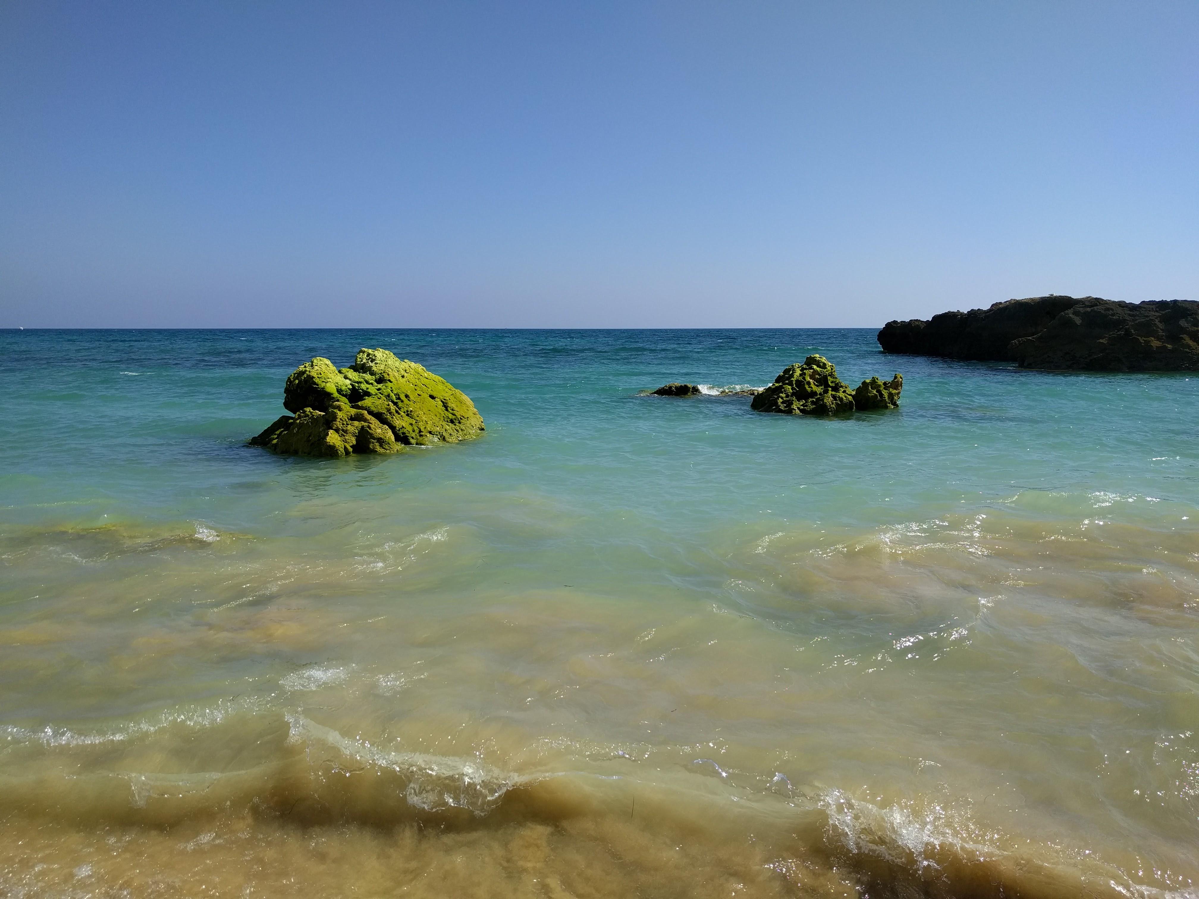 Albufeira Beach Green Rocks