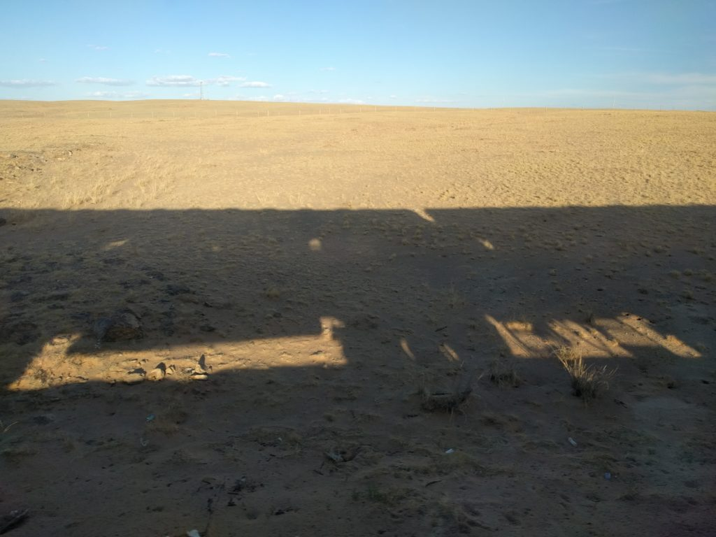 Gobi Train Shadow