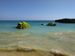 Albufeira Beach Green Rocks