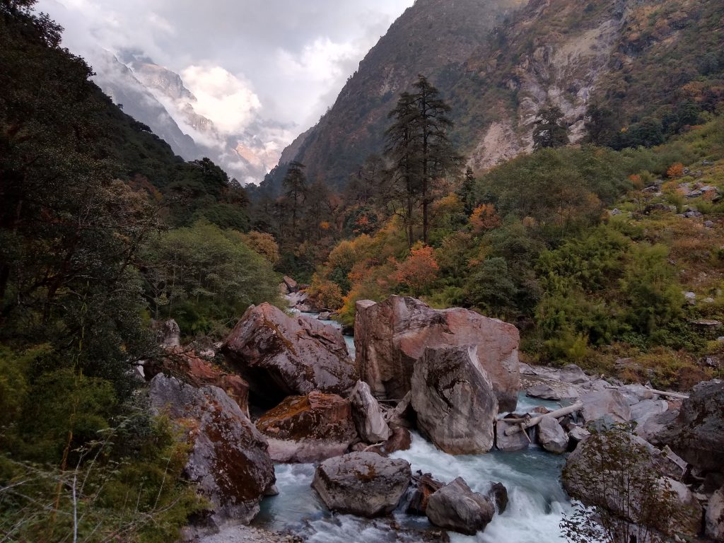 The Langtang River near Lama Hotel